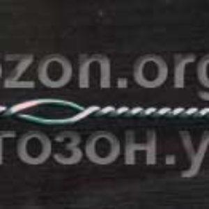 Логопедический зонд  «Вупсень»